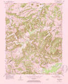 Download a high-resolution, GPS-compatible USGS topo map for Shady Grove, KY (1984 edition)