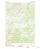 Download a high-resolution, GPS-compatible USGS topo map for Dighton, MI (1984 edition)