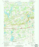 Download a high-resolution, GPS-compatible USGS topo map for Grass Lake, MI (1989 edition)