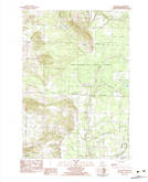 Download a high-resolution, GPS-compatible USGS topo map for Pleasanton, MI (1983 edition)