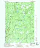 Download a high-resolution, GPS-compatible USGS topo map for Poplar Lake, MI (1985 edition)