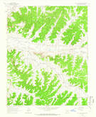 Download a high-resolution, GPS-compatible USGS topo map for Billy Rice Canyon, NM (1966 edition)