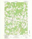 Download a high-resolution, GPS-compatible USGS topo map for Birnamwood, WI (1982 edition)
