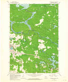 Download a high-resolution, GPS-compatible USGS topo map for Florence East, WI (1964 edition)