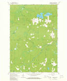 Download a high-resolution, GPS-compatible USGS topo map for Florence SW, WI (1981 edition)