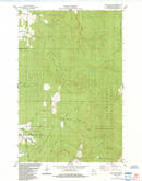 Download a high-resolution, GPS-compatible USGS topo map for Iron Lake NE, WI (1984 edition)