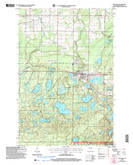 Download a high-resolution, GPS-compatible USGS topo map for Iron Lake, WI (2006 edition)