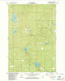 Download a high-resolution, GPS-compatible USGS topo map for Metzger Lake, WI (1984 edition)