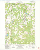 Download a high-resolution, GPS-compatible USGS topo map for Wittenberg, WI (1982 edition)